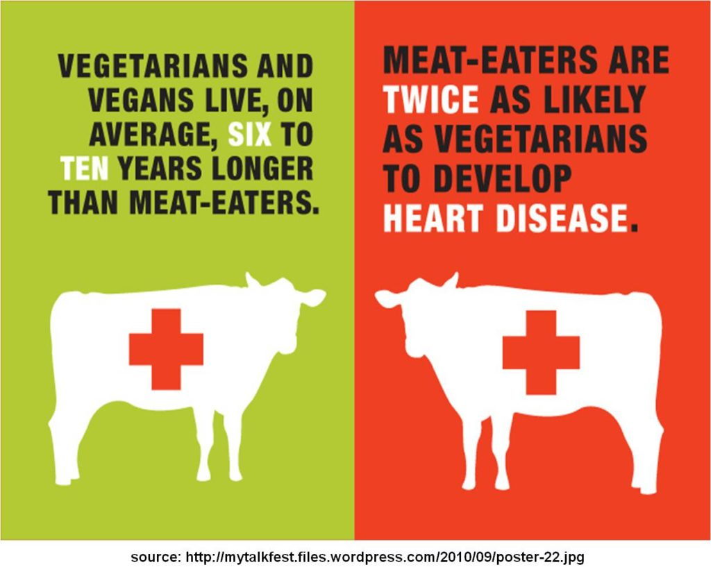 Illustration of vegetarian vs meat eater in relation to heart disease